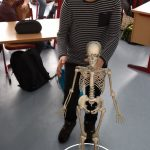 Ein Skelett im Klassenraum
